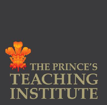 The Prince's Trust Institute